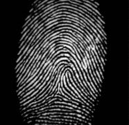digital finger print